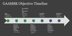 Objective Timeline